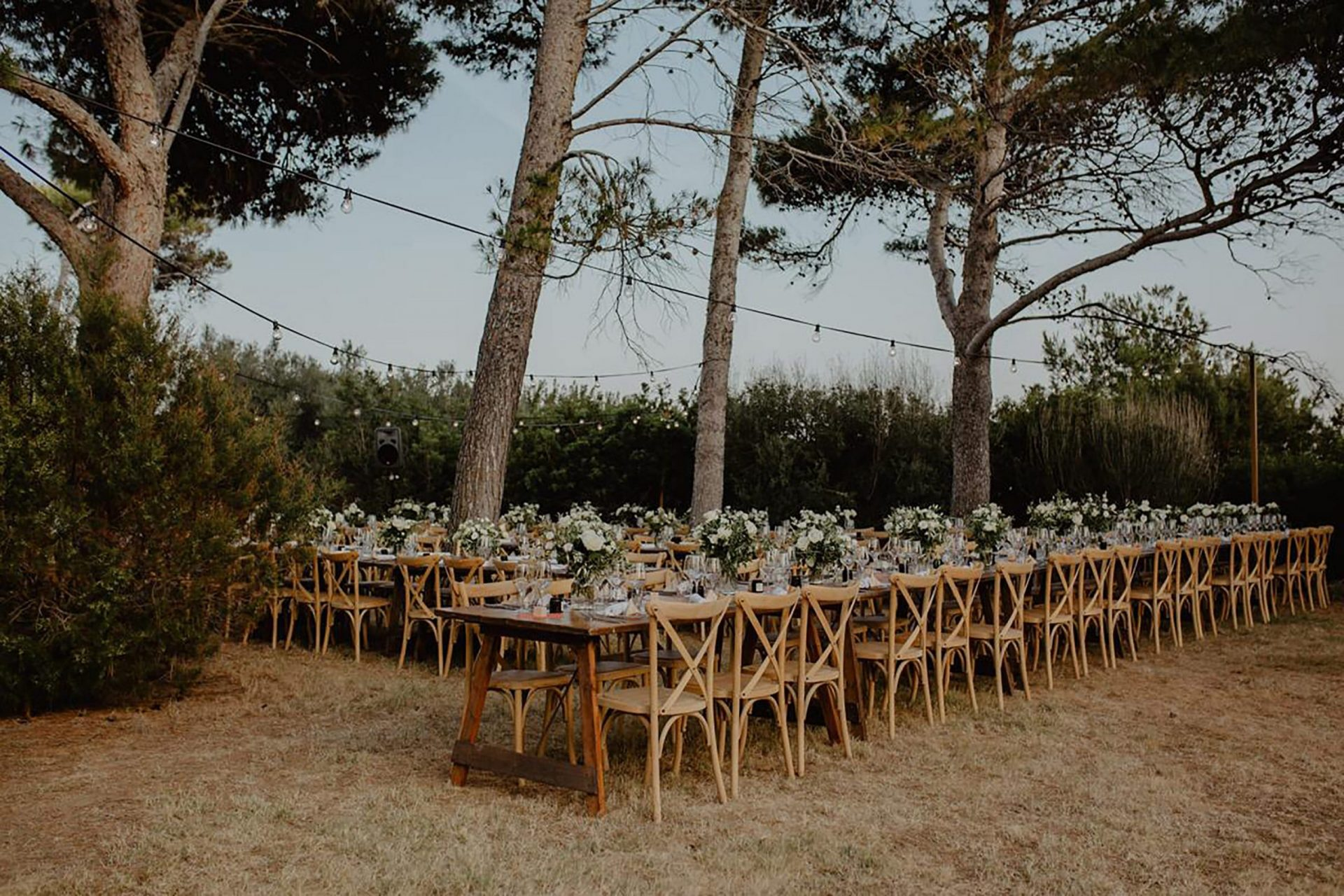 Luca and Delphine, long dinner table in the pine forest